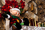 Elf Photos - Elf On Shelf by Christopher Holmes