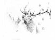 Western Art Drawings - Elk Bugle by Robert Martinez