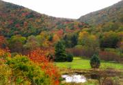 Panorama Mountain Images Prints - Elk Country Pennsylvania Print by Joshua Bales
