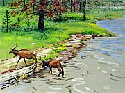 Yellowstone Painting Prints - Elk Crossing the Yellowstone Print by Donald Maier