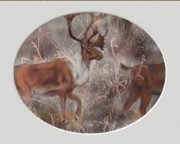 Wild Life Cards Digital Art Framed Prints - Elk Framed Print by Elva Kimble