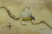 Jason Bordash - Elk Hair Caddis