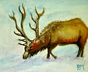Snow Pastels Originals - Elk by Pete Maier