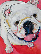 Vet Originals - Ella by Patti Schermerhorn