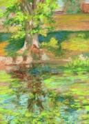 Waterside Paintings - Elm Tree by Angelina Whittaker Cook