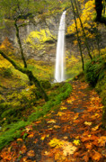 Fall Photo Prints - Elowah Autumn Trail Print by Mike  Dawson