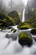 Waterfall Framed Prints - Elowah Framed Print by Mike  Dawson