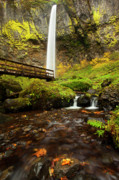 Columbia River Gorge Prints - Elowah Perspective Print by Mike  Dawson