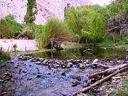 Beautiful Paintings - Elqui Valley Creek by Monica  Vega