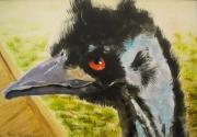 Emu Paintings - Elvis the Emu by Edith Hunsberger