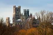 Ely Cathedral Scenic Print by Andrew  Michael