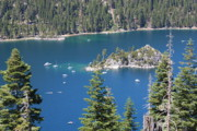 Pine Trees Art - Emerald Bay by Carol Groenen
