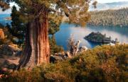 Bay Islands Framed Prints - Emerald Bay Overlook Framed Print by Norman  Andrus