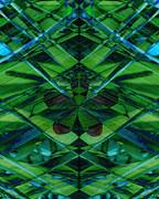 Emerald Cut Print by Ann Powell