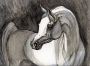 Arabian Horse Drawings - Emerging From The Darkness by Angel  Tarantella