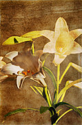 Flower Still Life Prints Digital Art Prints - Emerging Print by Janie Johnson