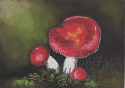 Botanic Drawings - Emetic Russula by Sherri Strikwerda