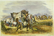 Wagon Train Photos - Emigrant Train Attack, 1857 by Granger