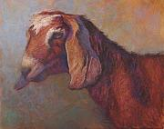 Farm Animals Pastels Prints - Emma Sundara Print by Susan Williamson