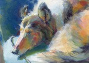 Collie Paintings - Emmies Beauty Sleep by Kimberly Santini