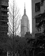 Mark Gilman - Empire State Building