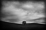 Textured Landscape Prints - Emptiness Print by Laurie Search