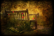 Peaceful Scenery Mixed Media Prints - Empty Bench and Poppies Print by Svetlana Sewell
