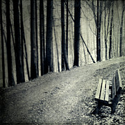 Dirt Road Prints - Empty Bench Print by Dirk Wüstenhagen Imagery