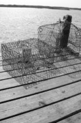 Crab Traps Photos - Empty Crab Traps by Gregory Smith