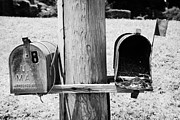 Unused Prints - empty old used american private mailboxes one with birdsnest in Lynchburg tennessee usa Print by Joe Fox