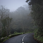 Mountain Road Prints - Empty Road Under Mist Print by Julio Lopez Saguar