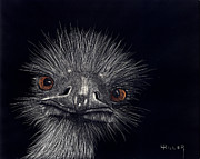 Animal Mixed Media Metal Prints - Emus In The Morning Metal Print by Linda Hiller
