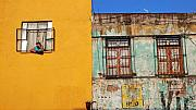Mexico City Metal Prints - En el Verano Metal Print by Skip Hunt