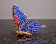 Insects Jewelry - Enamels 1 by Dwight Goss