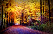 Fall Leaves Posters - Enchanted Fall Forest Poster by Carol Groenen
