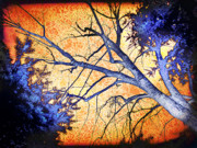 Silhouette Prints Mixed Media Prints - Enchanted Forest Print by Alex Tavshunsky