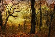 Landscape Digital Art Metal Prints - Enchanted Forest Metal Print by Iris Greenwell