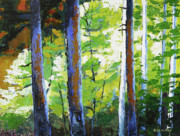 Northwest Landscape Mixed Media - Enchanted Forest by Melody Cleary