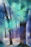 Home Design Element Framed Prints - Enchanted Forest. Painting with Light Framed Print by Jenny Rainbow