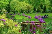 Byron Varvarigos - Enchanted Garden