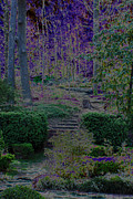 Carolyn Stagger Cokley Metal Prints - Enchanted Garden Metal Print by Carolyn Stagger Cokley