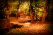 Pathway Digital Art - Enchanted Path - Allaire State Park by Angie McKenzie