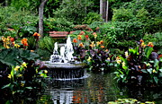 Canna Lilies Photos - Enchanted Pond  2 by Tanya  Searcy
