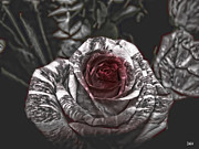 Detailed Mixed Media - Enchanted Roses by Debra     Vatalaro