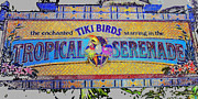 Tiki Art Posters - Enchanted Tiki Birds Poster by David Lee Thompson