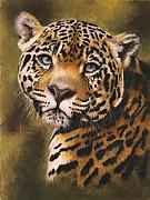 Jaguar Pastels Posters - Enchantress Poster by Barbara Keith