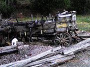 Pioneers Digital Art - End of the Trail Oregon Conestoga Wagon  by Glenna McRae