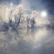 Cold Temperature Art - Endless by Philippe Sainte-Laudy Photography