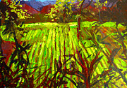 Grapevines Painting Prints - Endless Vineyards Print by Patricia Awapara