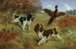Flying Photos - Energetic English Springer Spaniels by Walter A. Weber